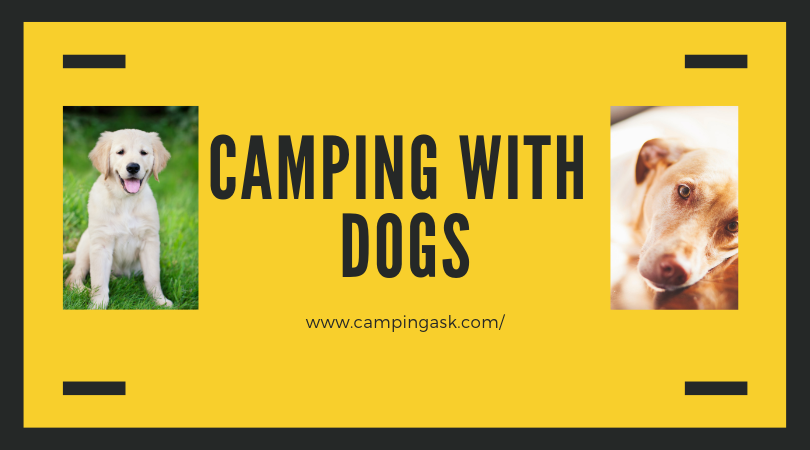 Tents For Camping With Dogs