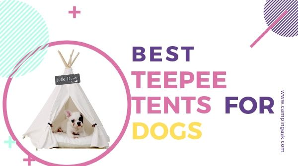 Teepee Tents For Dogs