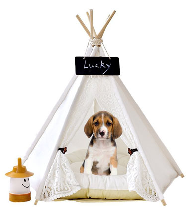 6 Best Teepee Tents For Dogs 2019 Review (Buying Guide)